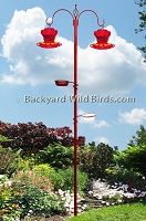 Hummingbird Feeder Station